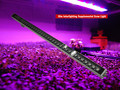 Full spectrum led tubes plant grow light bulbs for hydroponics/ tissue culture