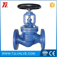 pn10/pn16/pn25 flange type din bellow sealed globe valve dn150 manual ari type good quality