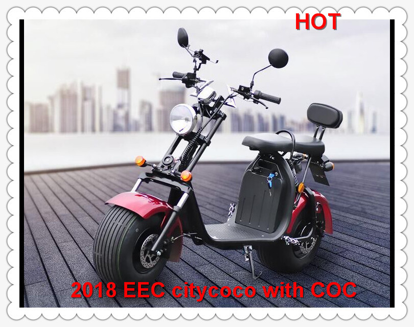 EEC citycoco motorcycle citycoco scooter parts