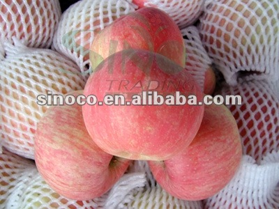 summer red apple fresh for sale