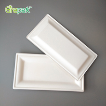 10x5 inch biodegradable disposable sugarcane bagasse rectangular square plate
