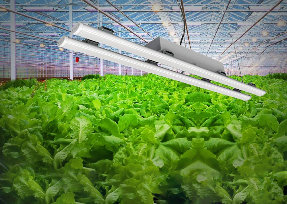 aimable full spectrum grow bar for growing wiz with high intensive with different angle