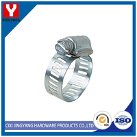 Customized competitive products spring hose clamp