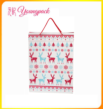Hot sale gift fancy paper bag
