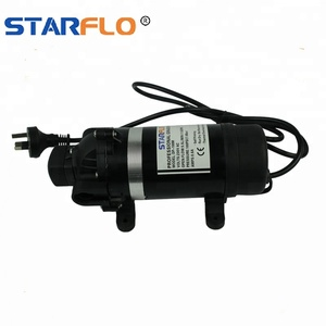 STARFLO DP-100M 230v ac 100 psi micro high pressure washer pump for car