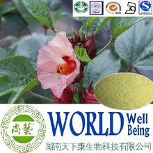 Cure Hemorrhoids/Hibiscus Flower extract 5:1 20:1