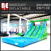 Two Color Jungle Wavelike Water Slide