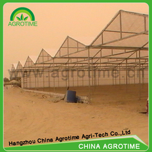 Multi Span Tunnel PE Plastic Film Hydroponic Systems Agricultural Commercial Greenhouse