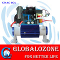 Hot sale air cooled ceramic ozone anion generator with adjustable card