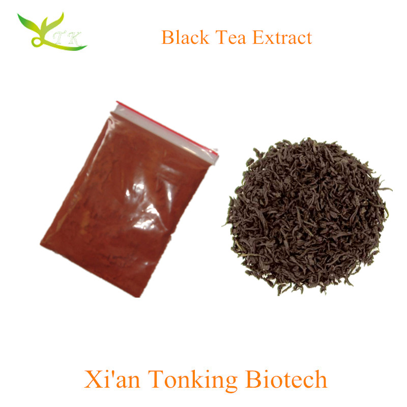 China manufactory supply High Quality Black Tea Extract