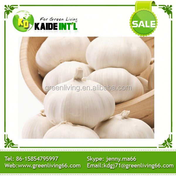 Price Of Garlic For Uk
