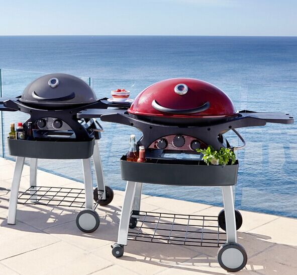 Portable Gas Barbecue Grill with Side Shelves for Outdoor Barbecue