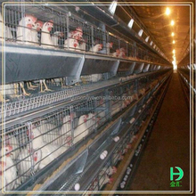 hot selling cheap price multi-tier hot dipped galvanized Kenya Chicken Layer Cage A Type Chicken Cage For Poultry Farm