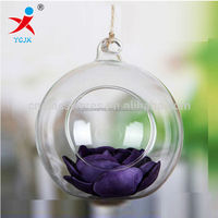 hot-sale hanging glass ball for flower