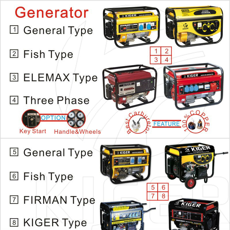 3kw gasoline swiss kraft generators