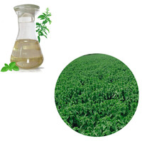 Dielegance GMP Factory Supply Natural Edible Peppermint Oil Food Grade