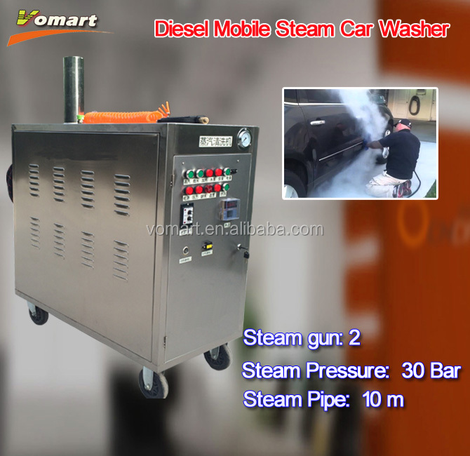 30bar Steam car wash machine with two steam gun/steam hand car wash supplies