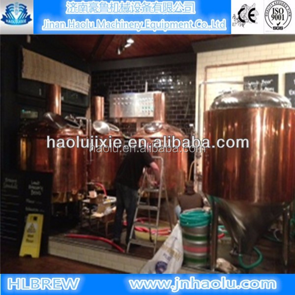 300l bar restaurant beer equipment ale and pilsner beer for Equipement bar restaurant