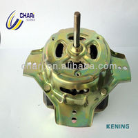 Home Appliance Electric Washing Motor For