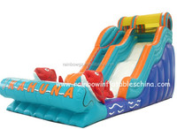 Ocean theme Giant happy hop inflatable slide with pool for kids