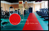 China Supplier Anti Slip Mat for Swimming Pool/gym/playground/car/ship