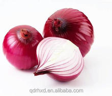 2016 wholesale fresh red Onion factory price