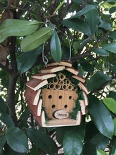 pet house wooden bird house