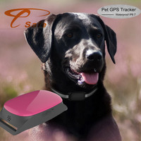 mini gps tracker dog SMS GSM/GPRS/GPS Child Hidden small gps tracker for kids