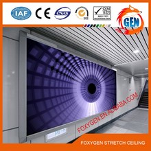 3D printed PVC Stretch ceiling decoration film