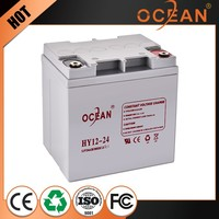 Low price best price 12V 24ah high capacity battery ups