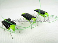 Hot selling solar plastic insect toy/solar rocking toy
