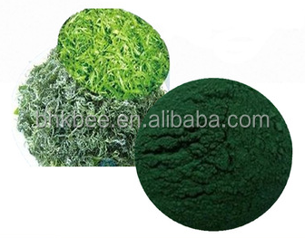 Alibaba Chinese Supplier Spirulina Capsules