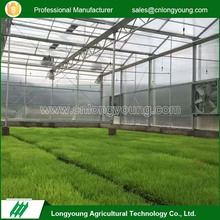 2017 New item agricultural commercial used polycarbonate greenhouse for sale