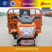 New Fashion Van Cargo Tricycle/Cheap Tricycle/Tricycle