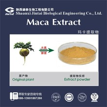 anti-cancer and anti-tumor strengthening energy macca food