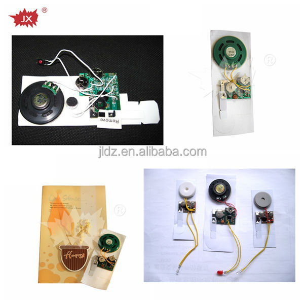 Sound chip recorder/mini voice recorded chip/audio recording chip