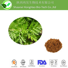 pure natural plant extracts Sweet Wormwood Herb,artemisia annua extract powder