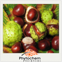 Chinese anti-inflammatory product Horse Chestnut Extract 20%~98% Aescin