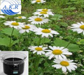 ISO9001,Kosher,certificated manufacturer supply pure natural pyrethrum extract 50%