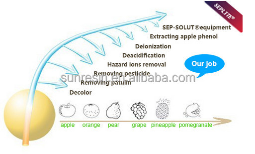decolorizing adsorbent resin for Sugar, wines and fruit juice
