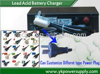 Equal / float charge auto switch lead acid batteries Charger