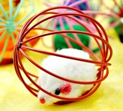 Cage Mouse Games Cat Toy Pet Sex Toys New Products Wholesale Pet Products