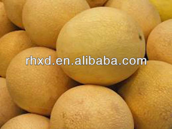2013 new fresh Hami melon on selling