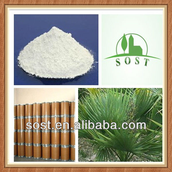 New Product Extract Powder Saw Palmetto