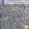 /product-detail/slabs-tiles-light-grey-new-g603-china-stone-grey-g603-granite-suppliers-and-manufacturers-uniform-shade-and-lowest-pricing-60693841686.html