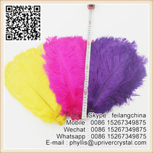 Wedding decoration 30-35cm colorful Ostrich feather