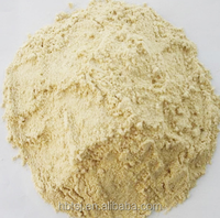 Wheat Gluten for bakery