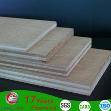 Cheap price two-time hot press eucalyptus plywood/furniture plywood