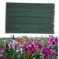 Dyeing Green Bamboo Sticks with Best Bamboo Poles Price for Orchid