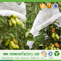 PP Non woven fabric plant cover tree protection plant cover tomato plant cover